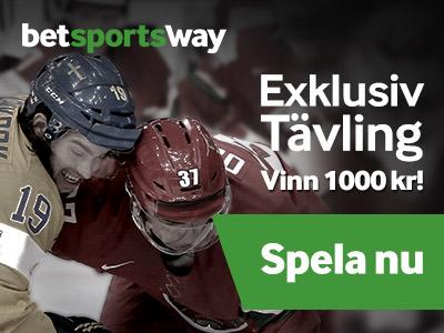 NHL-matcher 29-30/11-2104